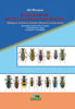 Tiger Beetles of the Madagascan region